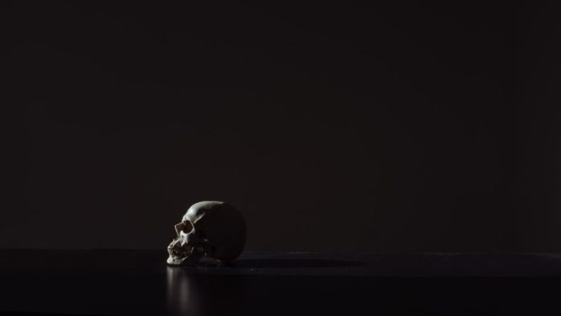 black skull wallpaper hd for mobile