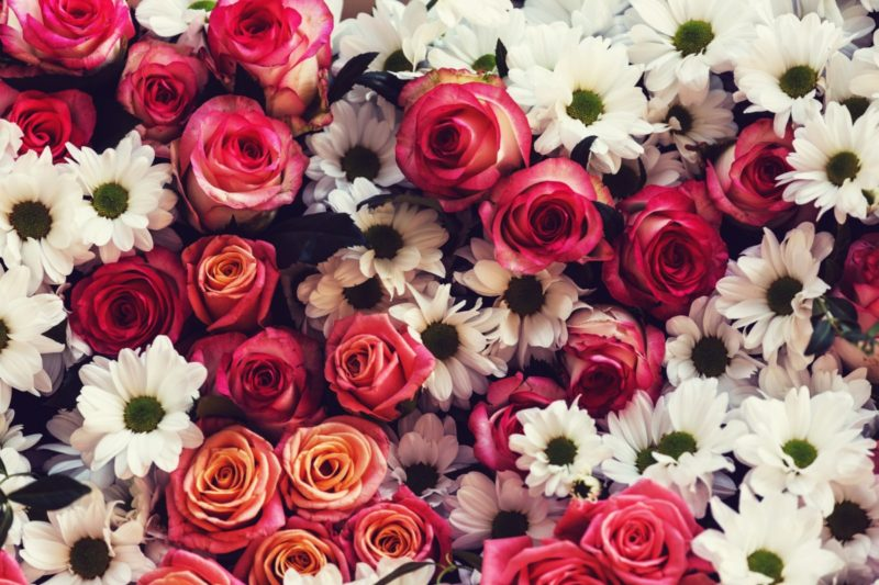 85 Quotes About Flowers Inspirationfeed