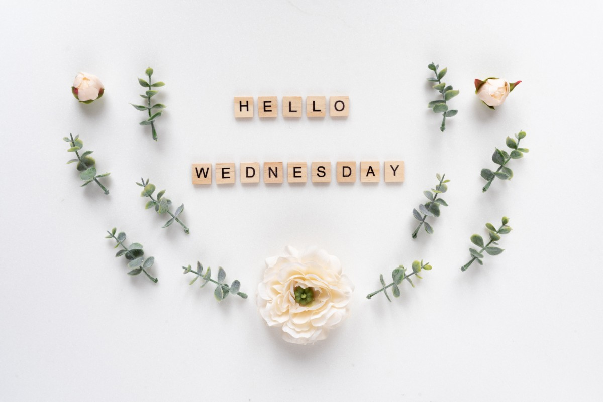 80 Wednesday Motivation Quotes | Inspirationfeed