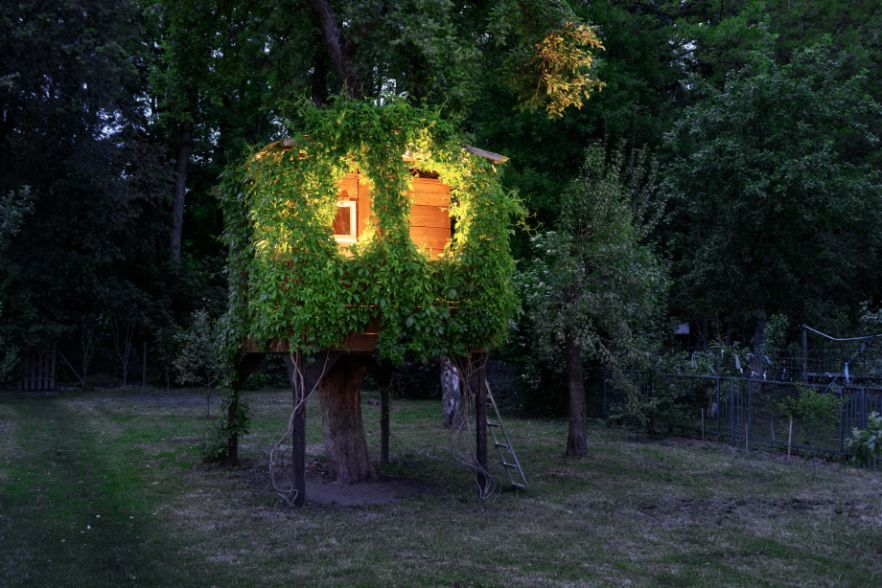 Four reasons treehouses aren't just for kids