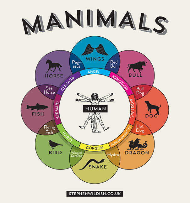 A guide to the different hybrids of animals