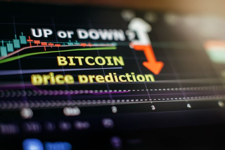 What Is Keeping the Crypto Universe Abuzz