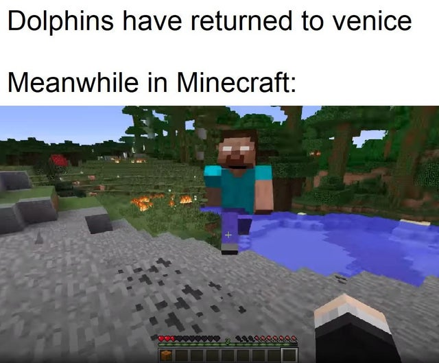 70 Dank Minecraft Memes That Only Fans Can Relate To Inspirationfeed