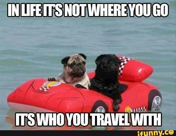 35 Funny Travel Memes You Will Easily Relate To Inspirationfeed
